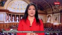 Table ronde sur la formation professionnelle - Les matins du Sénat (16/05/2018)