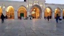 #شاهد | الطريق من باب العامود الى المسجد الاقصى المبارك .. الرحمة لشهداء غزة #القدس_عاصمة_فلسطين
