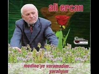 Ali Ercan - Medine'ye Varamadım (Official Audıo)
