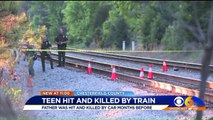 Months Before Teen Killed by Amtrak Train, His Father Was Killed by Car
