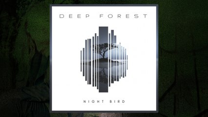 Deep Forest - Night Bird (Audio)