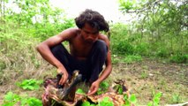 Primitive Technology - Find Goat in Forest - Grilled Goat eating delicious
