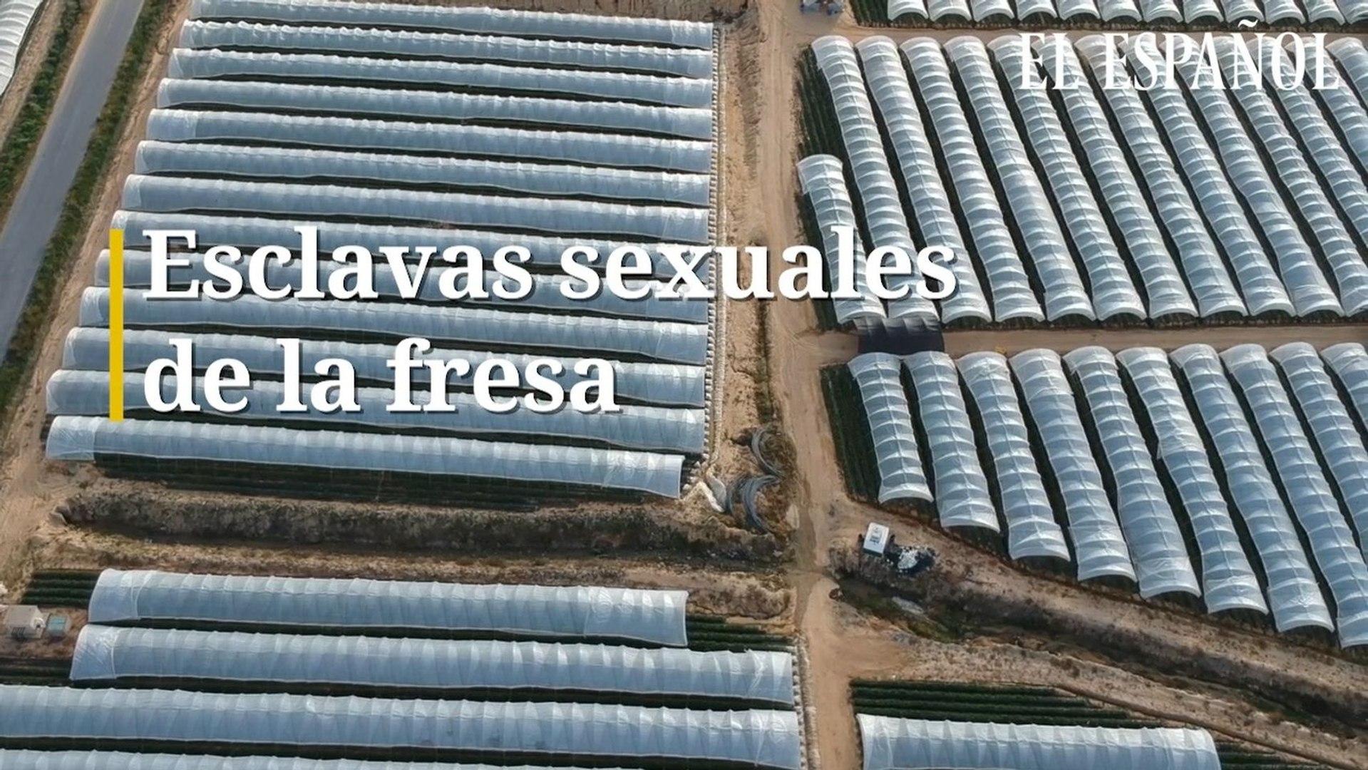 2 Esclavas Porno esclavas sexuales en los campos de la fresa en huelva