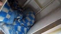 Будка для собаки из холодильника // Будка с отоплением // Своими руками