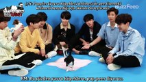 [18.05.2018] BTS Plays With Puppies While Answering Fan Questions (Türkçe Altyazılı)