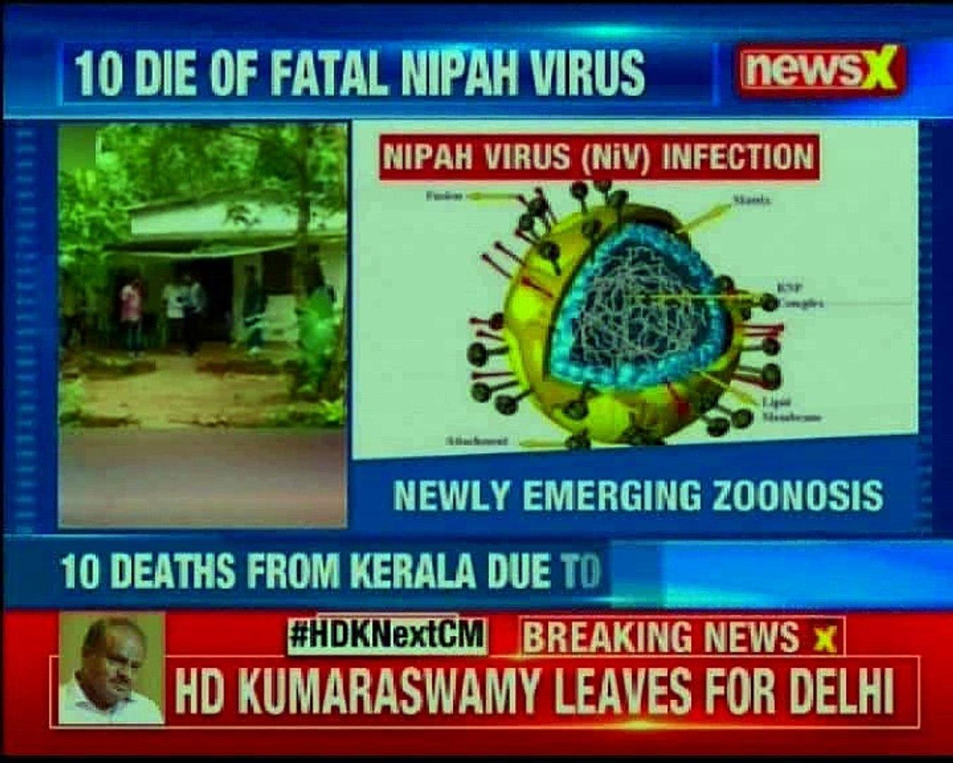Nipah virus outbreak: Rare and deadly virus scare; 10 die of fatal Nipah virus