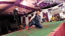 Tere Ishq Me Nachenge - Raja Hindustani Songs - New Hindi Arkestra Dance Program 2017 -