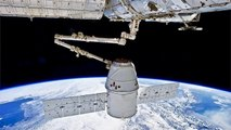 Experiments SpaceX Dragon Brought To ISS (International Space Station)
