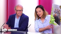 Le Grand Talk  - 24/05/2018 Partie 1 - La Petite Histoire - Ils ont sauvé une abbaye