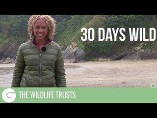 30 Days Wild | The Wildlife Trusts