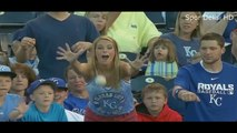 Video Most Funny Moments of Fans in Sports History ● HD
