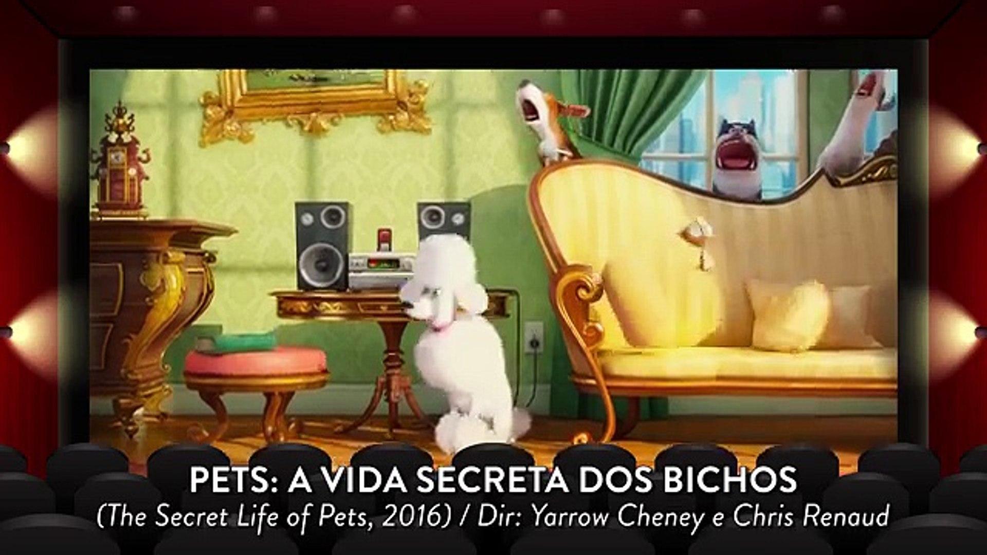 A Vida Secreta Dos Bichos O Filme Completo Dublado pets: a vida secreta dos bichos é bom? - vale crítica