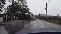Jako nevrijeme zahvatilo je danas poslije podne Podgoricu i nekoliko gradova na sjeveru, a jak vjetar čupao je stabla drveća.