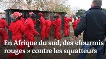 Afrique du sud : des « fourmis rouges » contre les squatteurs