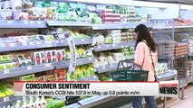 South Korea's consumer sentiment rebounds in May