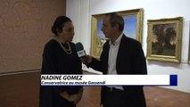 Alpes-de-Haute-Provence : Du musée Gassendi au géoparc l'art est omniprésent à Digne-les-Bains