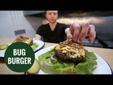 City gore-met burger bar serves up 8oz burger topped with dried insects
