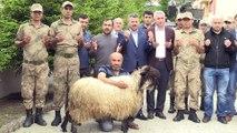 Giresun'daki terör operasyonu - 2 teröristist öldürüldüğü için kurban kestiler