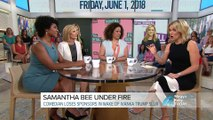 Samantha Bee's vulgarity 'distracted us from policy': Megyn Kelly roundtable