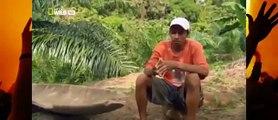 Snake Documentary Best Documentary Films - Nature documentary Monster Croc Hunt Animal planet