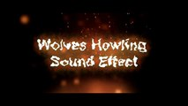 Howling Wind Sound Effect - video dailymotion