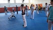 Une journée de stage de capoeira dimanche 3 juin 2018