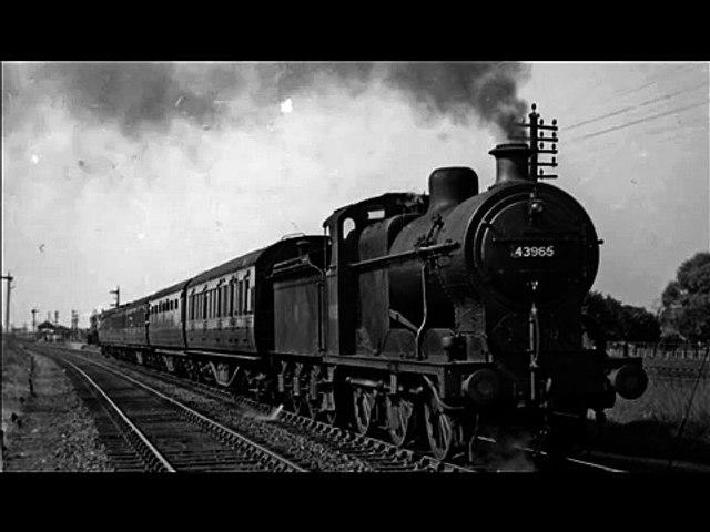 Blues Train - Old Tree BLues