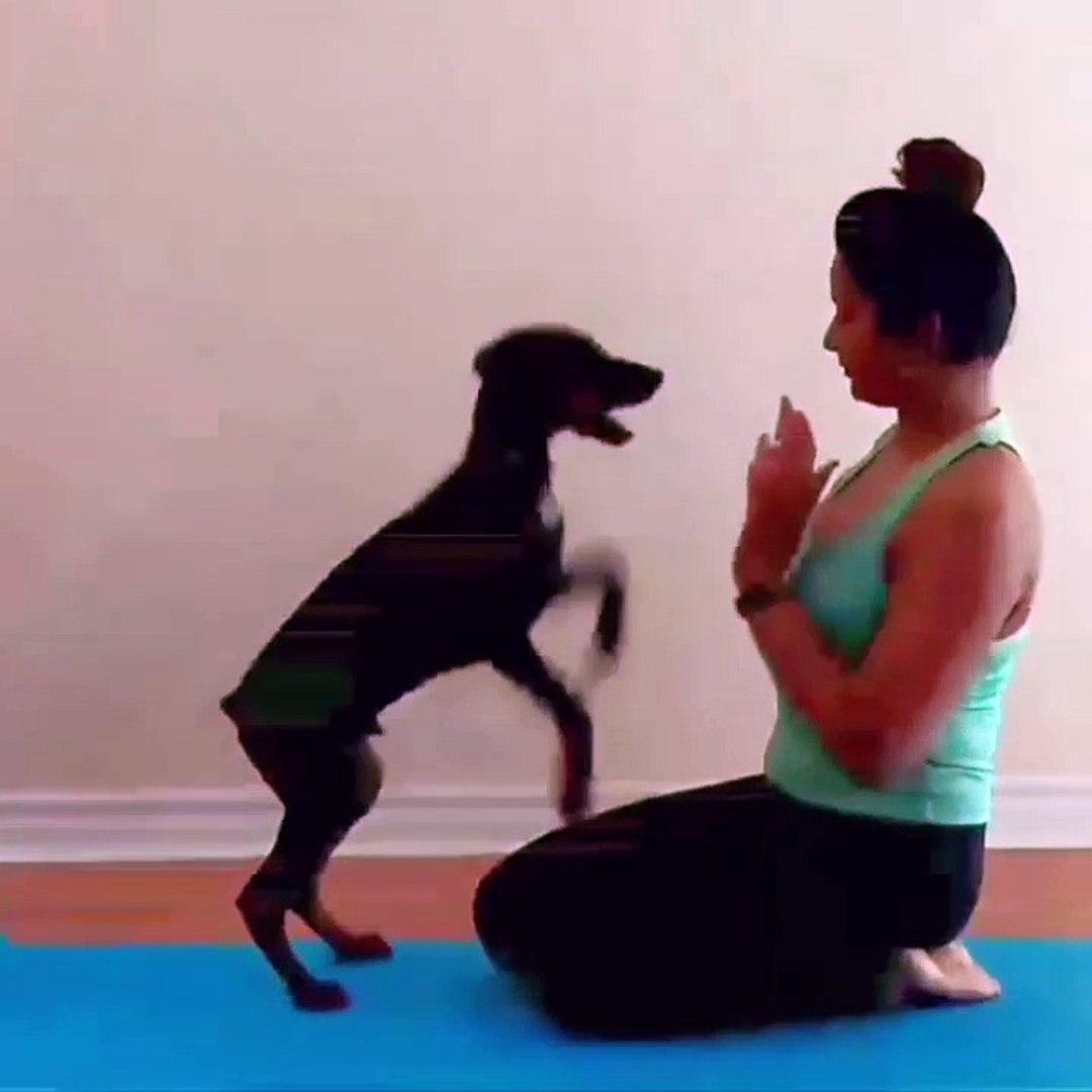 serial actress madhu Mila hot tight fit yoga