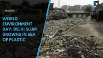 World Environment Day : Delhi slum drowns in sea of plastic