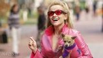 Reese Witherspoon in Talks to Reprise Role for 'Legally Blonde 3' | THR News