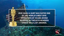 Readers Choice 2018 - Dive Oahu and Surf