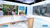 Bécassine : pourquoi elle divise les Bretons