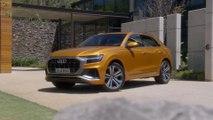Das neue Gesicht der Q-Familie - der Audi Q8
