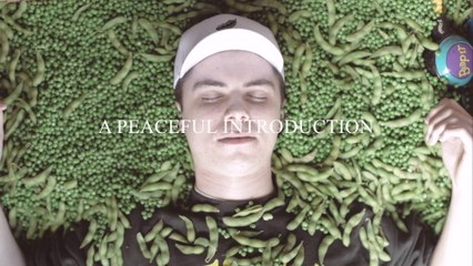 PEABOD - A PEAceful Introduction
