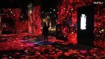 Massive immersive digital art installation melts and warps boundaries