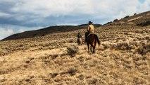 Yellowstone Season 1 Episode 1 [1x1] Paramount Network // Full Free