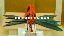 Everything You Ever Wanted To Know About Origami Folded Up In One Cool Space