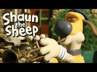 Whistleblower - Shaun the Sheep