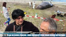 Lac de Serre-Ponçon : faux cachalot pour vraie oeuvre artistique
