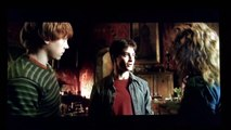 Harry Potter and the Half-Blood Prince- Harry Potter on felix felicis
