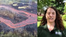 Hawaii volcano Lava fountains SURGE out Kilauea crater & destroyed at least 600 homes