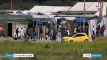 "Calais : après la ""jungle"", la nature reprend ses droits"