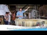 Ath: le Cheval Bayard dénudé pour se faire une beauté