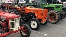 Comice agricole : l'agriculture sous son meilleur jour