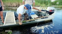 En Floride, des françaises se divertissent en tuant... des alligators pour le plaisir ! Regardez