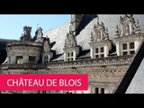 ROYAL CHATEAU OF BLOIS - FRANCE, BLOIS