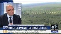 """Huile de palme: """"Nous devons travailler à une réponse européenne"""", affirme Stéphane Travert"""