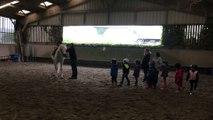 pordic poney club voltige 2