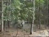 saut en suzuki a travers les arbres
