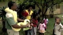 Black Mamba Snakes - Africa's Most Dangerous Snake [BBC Nature Documentary]